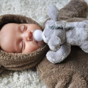 speenknuffel paciboo olifant